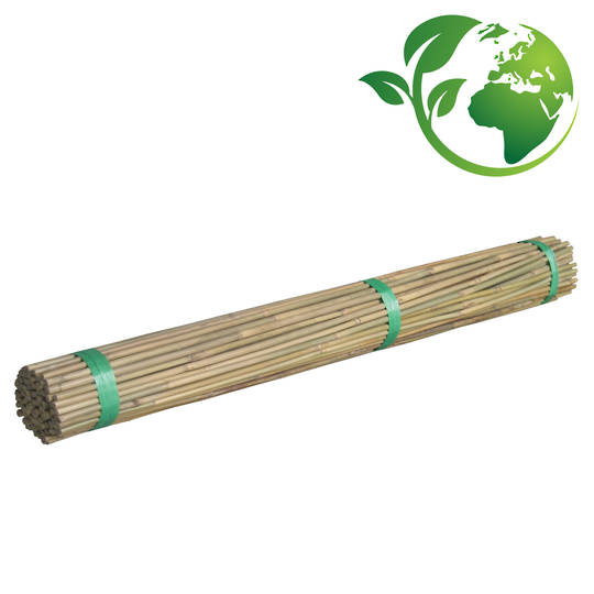 Bamboo Canes 500-2400mm length