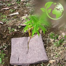 CombiGuard EcoWool Mulch Mats 500gsm 400x200mm