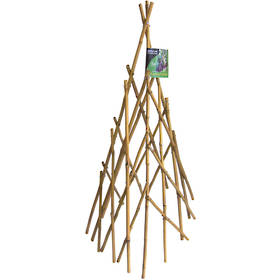Bamboo Growing Frame